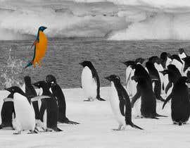 #17 cho Alter penguin image bởi vndesign2013