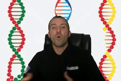Image of                             Make My Video with Transparent B...