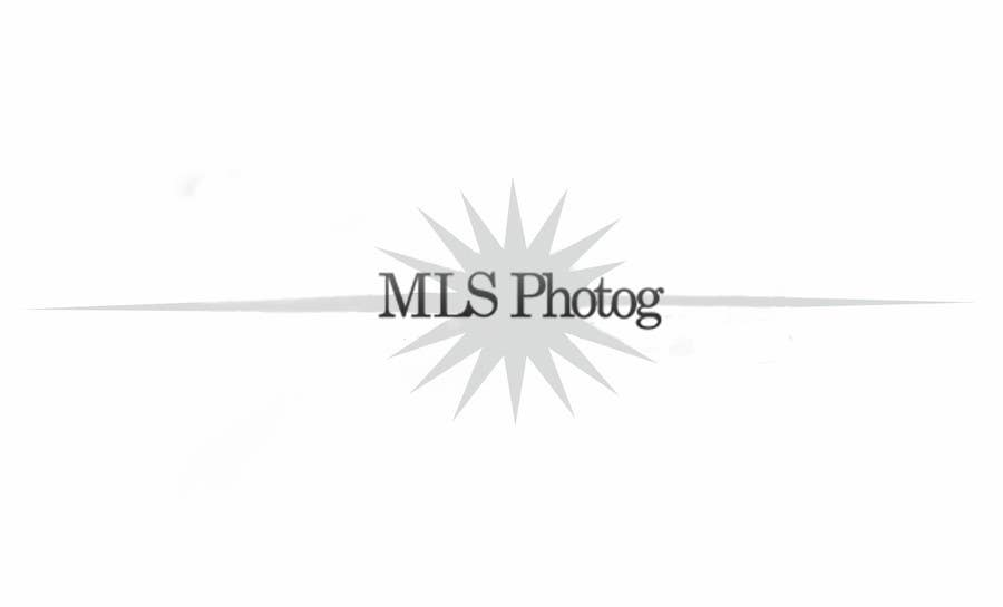 Inscrição nº                                         44                                      do Concurso para                                         Design a Logo for MLS Photog