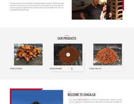 nº 22 pour New look for our site par zaxsol