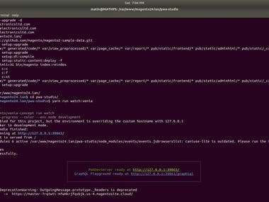 Magento 2.4 with PWA on my local Server