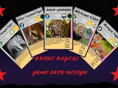 I designed Trading Card Games for myself and clients.