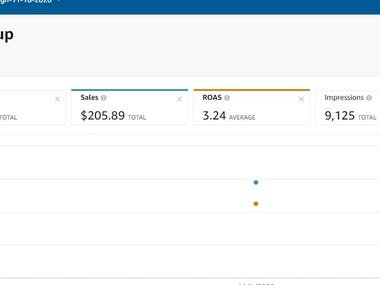 I have created and managed a PPC campaign for a US client for 7 days.