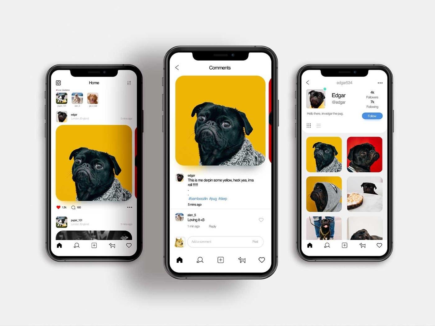 1467572-dog-social-fashion-160.jpg