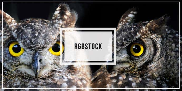 Two free, awesome pictures taken from RGBStock