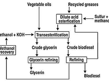 preparation of biodiesel from waste cooking Production of biodiesel from waste vegetable oil - wahab maqbool - bachelor  thesis - engineering - chemical engineering - publish your bachelor's or.