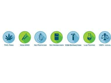 Icons all in vector. Created for Website