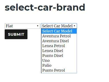 This plugin put on site form of the car selection that is allowing users to select brand and mark of the car and then press submit button to get price and discount for this chosen data. For output data in posts or pages uses shortcode [select-car-brand] or do_shortcode('[select-car-brand]'); in any themes.