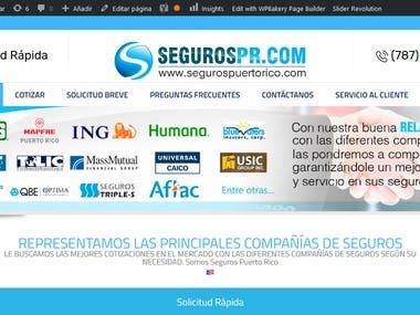 - Website development - Mobile website - SEO