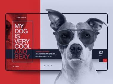 Inspiration Web Design