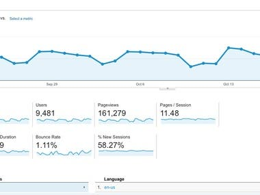 Organic Traffic By White Hat SEO and Social Media Marketing