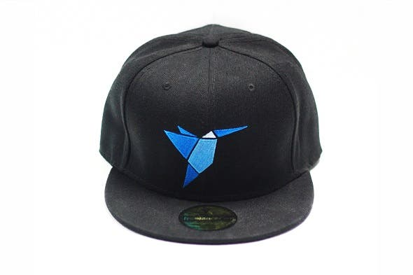 Freelancer Cap 2