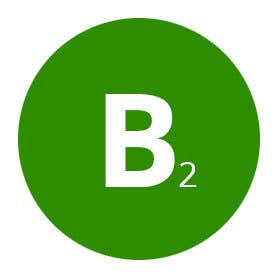 Profile image of basetwo