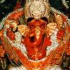 RushiShukla's Profilbillede