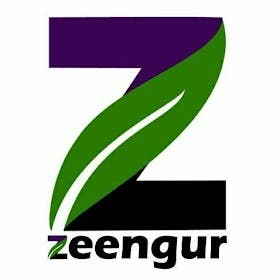 Profile image of zeengur