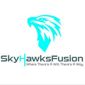Profile image of skyhawksfusion