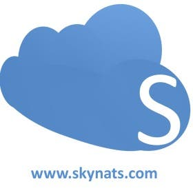 skynatstech - India