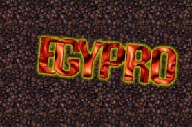 Profile image of egypro