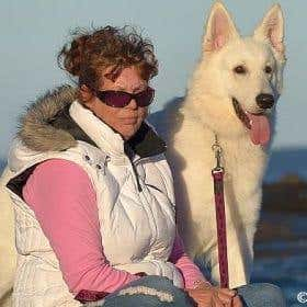 whiteshepherd - Australia