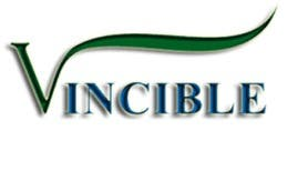 Profile image of vincible13