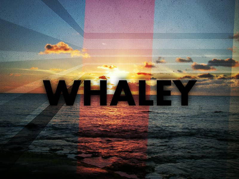 Profile image of whaley